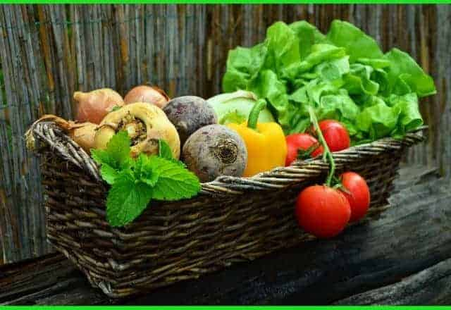 Best Vegetables For Healthy Eating During the Autumn Season