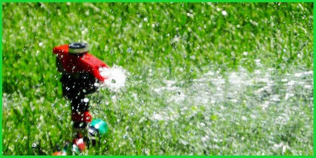 How to Water Your Lawn in Fall and Winter Properly