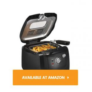 Hamilton Beach Deep Fryer with Cool Touch 2L Capacity review